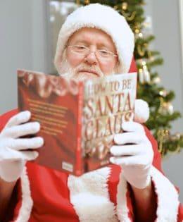 Santa David
