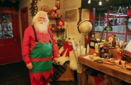 Busy Elf/Santa