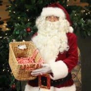 Santa Hank – CandyCanes