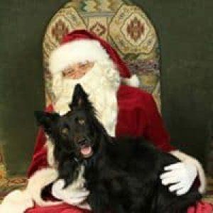 Elf Ollie & Santa